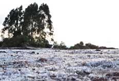 Em São José dos Ausentes temperatura chegou a -2,5ºC pela manhã-Jean Schwarz