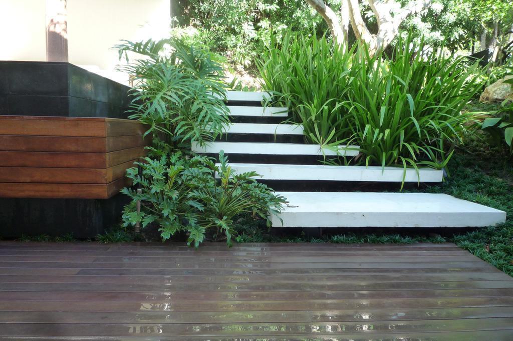 escada para o jardim:Jardins voltados para o clima temperado misturam plantas de fácil